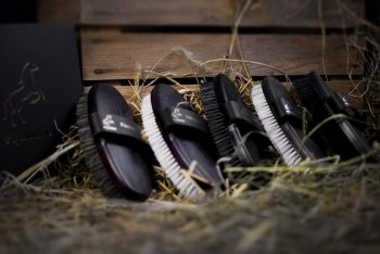 Eqclusive Black/Dark Bay Horse Pack