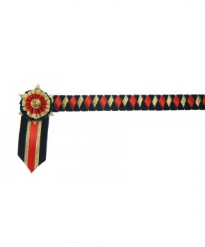 ShowQuest Boston Browband