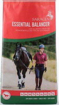 Saracen Essential Balancer 20kg