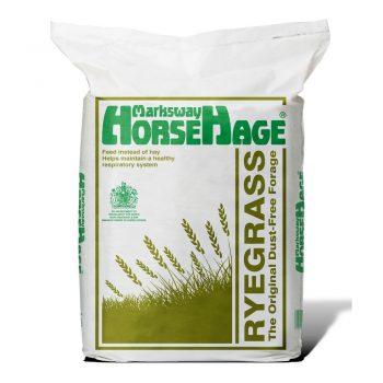 HorseHage Rygrass