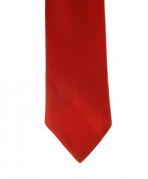 ShowQuest Childs Plain Tie