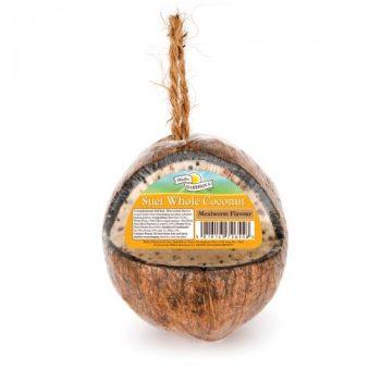 Harrison's Suet Whole Coconut